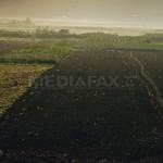 Guvernul va elabora reglementări care să oblige proprietarii de terenuri să le cureţe