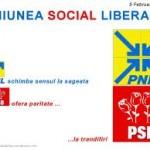 PNL si PSD discuta despre fuziune