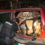2. 640 tablete, 255 fiole de anabolizante şi 988 pachete de ţigări confiscate de inspectorii vamali
