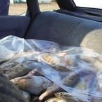 Podu Turcului: Trei barbati cercetaţi pentru braconaj piscicol