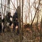 Scorţeni: Un barbat a fost impuscat în timp ce se afla la braconaj