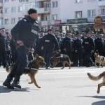 Activitati  in intampinarea Zilei Jandarmeriei Române