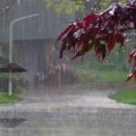 Avertizarea meteorologilor: Cod portocaliu de ploi în 8 judeţe