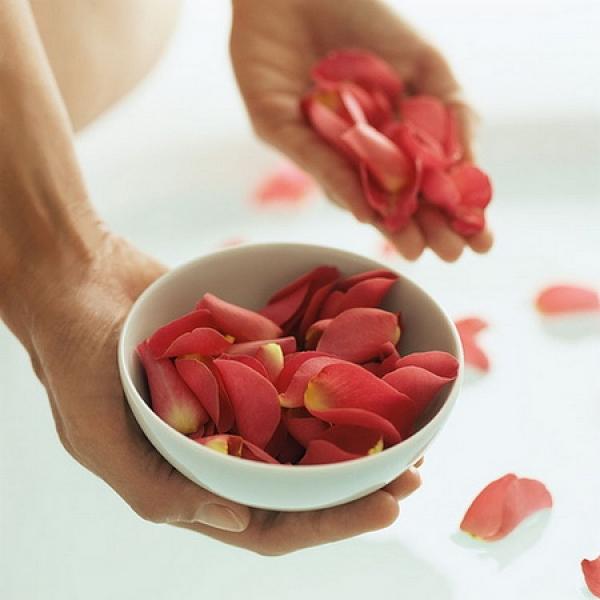 petale_trandafir