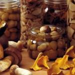 5 lucruri fascinante nestiute despre ciuperci