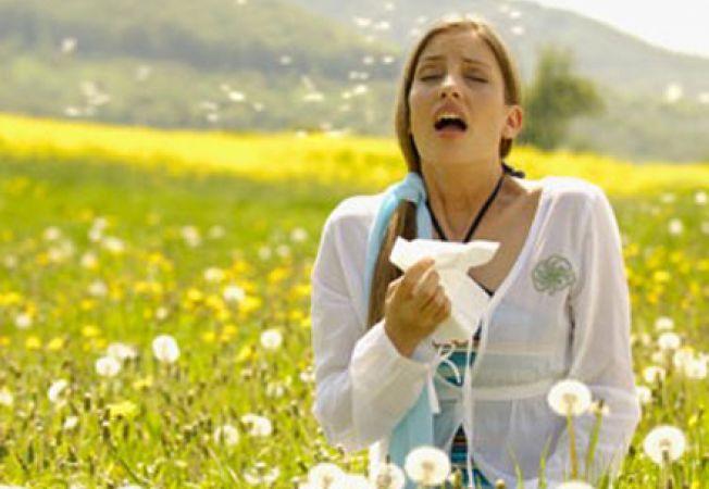 652x450_089892-cum-faci-fata-alergiilor-de-vara