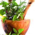 Cele mai bune plante pentru afecțiunile digestive