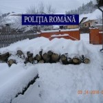 Peste 50 de m.c. de material lemnos, confiscat de polițiști, în urma unor percheziții domiciliare