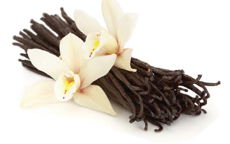 2321_madagascar-Vanilla-Bean