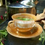 Beneficiile ceaiul din frunze de dud