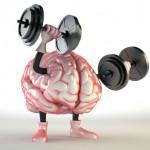 Cum să ne menţinem creierul în formă maximă