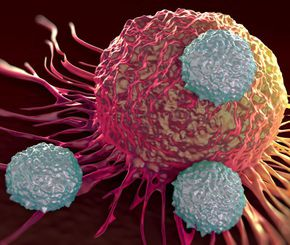 44667194 - t-cells attacking cancer cell illustration of microscopic photos