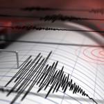 Un cutremur a zguduit România în urmă cu putin timp!