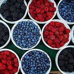 Fructele de pădure reduc febra musculară
