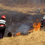 Incendii de vegetație uscată