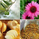 Cele mai bune antibiotice naturale