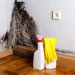 Alergia la mucegai: simptome, factori de risc, tratament