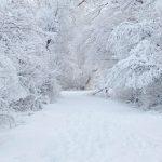 Temperaturi incredibile și ninsori viscolite în următoarele zile, în întreaga țară