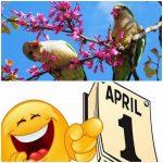 Semnificatiile zilei de 1 aprilie