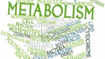 9 modalităţi pentru a-ţi accelera metabolismul