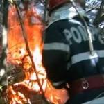 Incendiu de litiera iun comuna Oituz