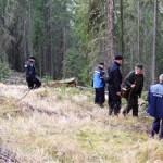 Cercetat pentru tăiere ilegală de arbori