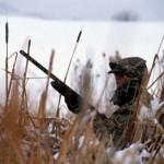Onesti: Barbat cercetat pentru braconaj la vânătoare și nerespectarea regimului armelor și munițiilor
