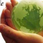Ziua Mondială a Mediului – 5 iunie 2014