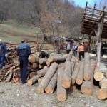 Verificarea legalităţii exploatării, prelucrării şi transportului materialului lemnos