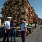 Transporta material lemnos fără documente legale