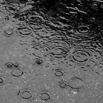 Ploi, intensificări ale vântului și scădere a valorilor termice, în întreaga țară
