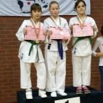 Campionatul National de Karate pe echipe