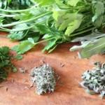 Plante care stimulează funcţionarea creierului