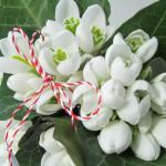 Semnificaţia florilor de primăvară