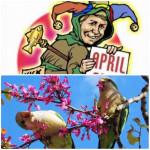 Semnificatia zilei de 1 aprilie